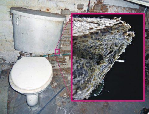 Asbestos Testing – Why it is sometimes needed on Las Vegas Homes built before 1985
