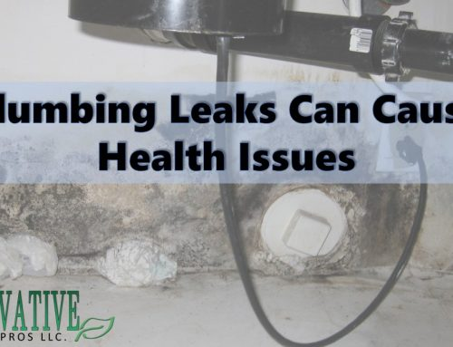 Plumbing Leaks Can Cause Health Issues