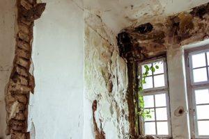 plumbing-leak-causes-mold-growth