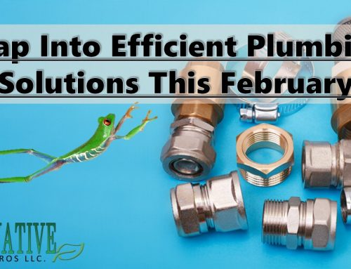 Leap Into Efficient Plumbing Solutions This February