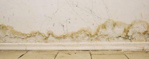 slab-leak-sign-water-damage