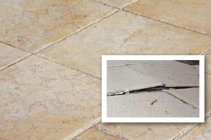slab-leak-sign-wet-floor